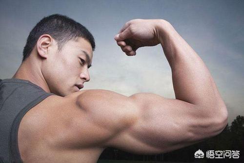 喙突位置图,如何拥有一个粗壮的手臂?
