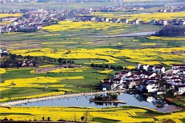 安庆望江县是个什么样的地方?