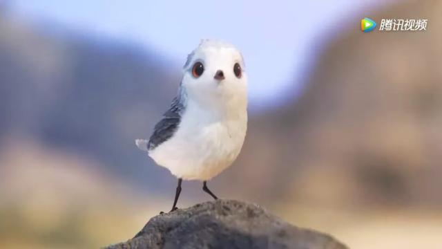 污翼鸟3d,有什么好看的动画短片值得推荐?