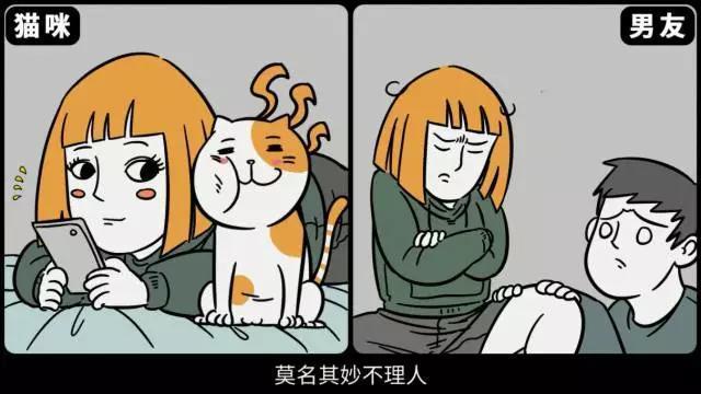 头像是猫的男生是什么性格?