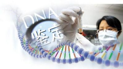 亲子鉴定价钱:DNA亲子鉴定的价格是多少?