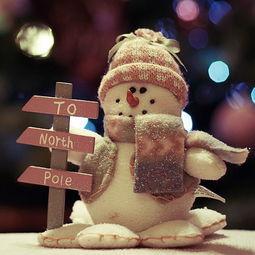圣诞节礼物应该在哪一天送,圣诞节该不该和男朋友要礼物?