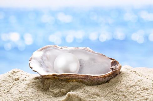 为什么很多奢侈品牌的珍珠饰品都使用假珍珠?插图4