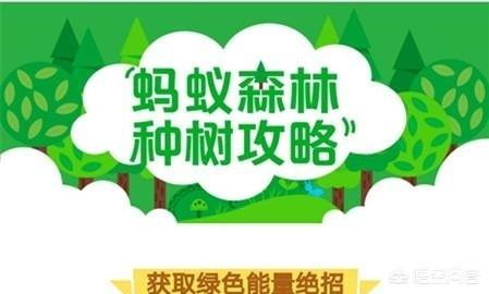 蚂蚁森林1分钱915能量(每天3个296g能量怎么弄)