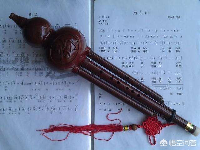 拇指琴简谱,最容易上手、进步最快的乐器是?
