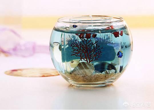 鱼缸上过滤改下过滤图 上滤鱼缸怎么加强过滤 过去老水族箱怎么改成下过滤?
