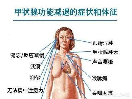 """为什么会得甲减?hondayz的人,""""头部""""会出现哪些迹象?什么人,容易高血压?如何改善高血压?"""
