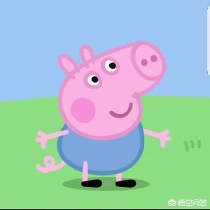 猪的头像,什么样的照片适合当做头像?