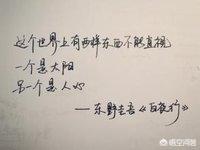 东野圭吾的《白夜行》怎么样?