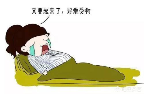 怀孕动漫,怀孕后睡觉究竟有多辛苦?