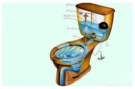 马桶图片,马桶坐便器什么品牌的质量更好?