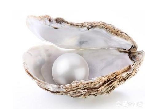 龙南美味的珍珠粉,是用什么做的?插图4