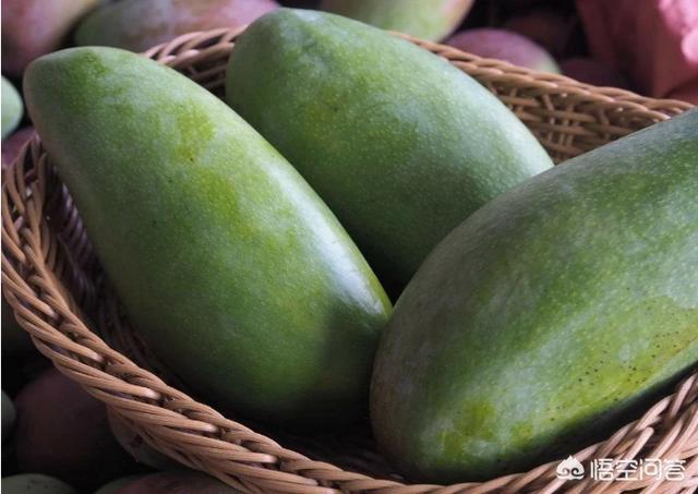 百色芒果是什么 百色的芒果为什么哪么出名?