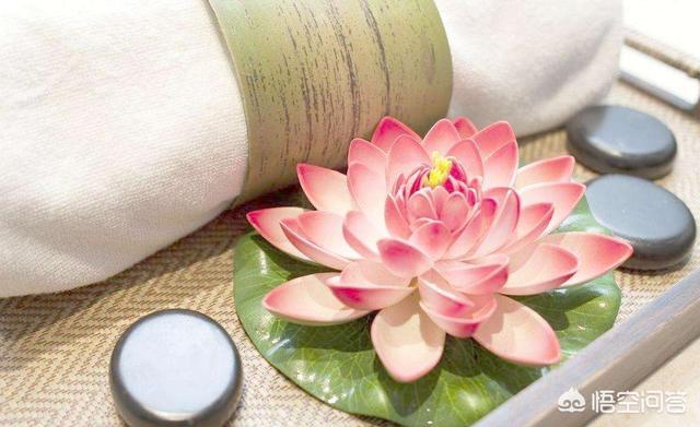 佛教圣物佛牙、莲花为什么是佛教的圣物?