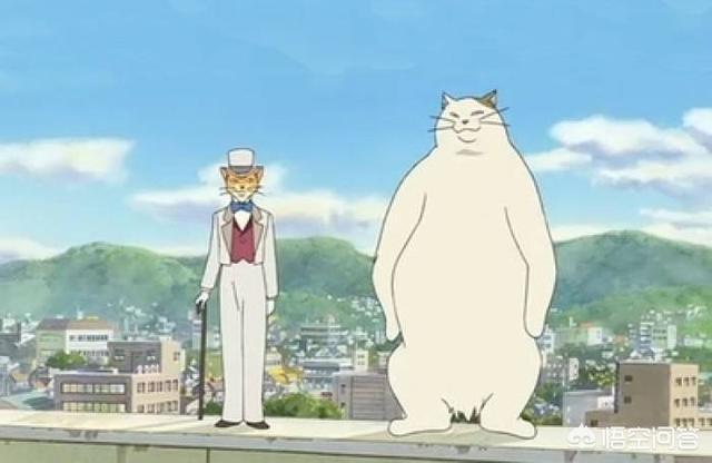 猫咪老师头像,动漫中,有哪些著名猫咪角色?