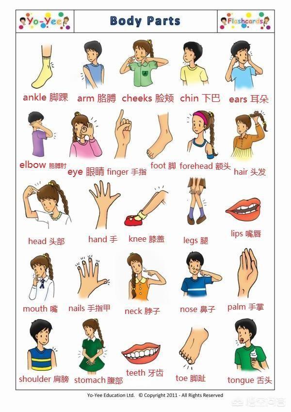孩子在小学期间想学英语,都上什么培训班?小学学英语用什么好