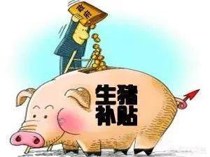 中央政府对养殖业有什么样扶植经济政策?不用盖石屋也能养猪,我们知道养殖猪的果树如何搭建吗?