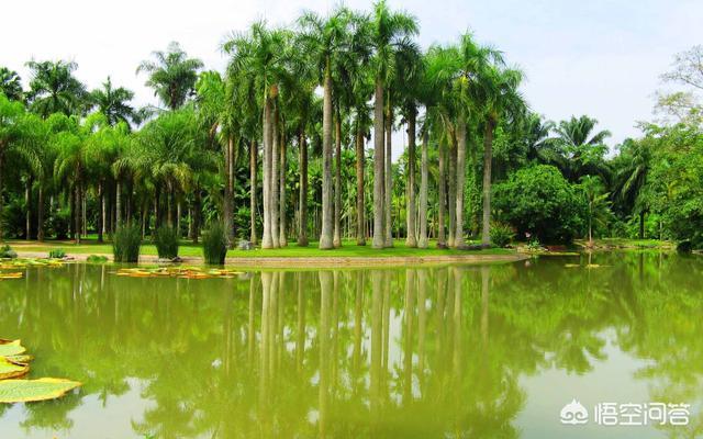 云南有什么著名的旅游景点?插图1