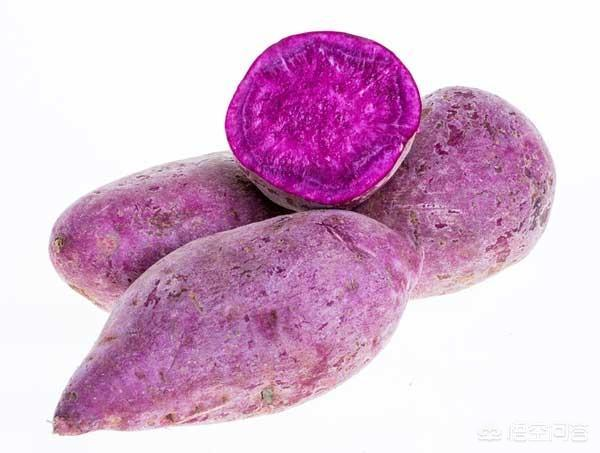 紫薯如何种植才能高产?对水、肥有什么需求?