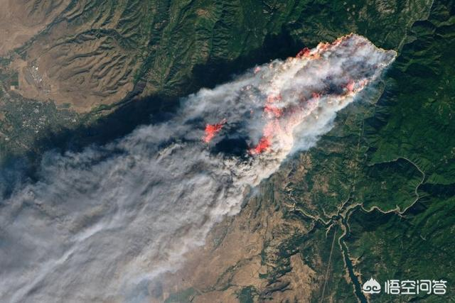 加州大火给美国加州造成了多大的影响?对此你