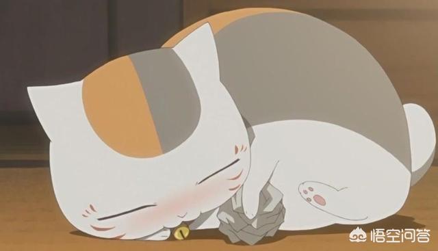 卡通猫咪头像,动漫界有哪些猫比较出名?
