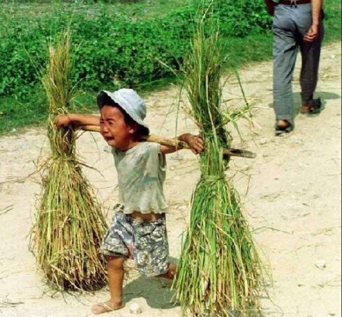 疯狂小杨哥母亲向老爸要六一儿童节礼物,你小时候经历过穷苦生活吗?