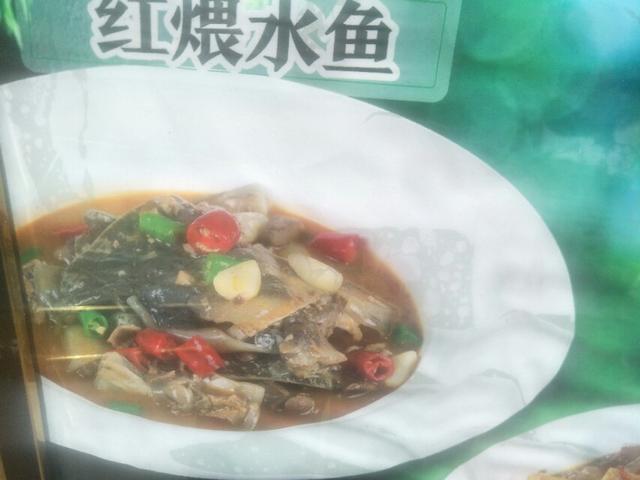 如何清炖黄甲鱼最简单的?(清炖甲鱼汤的做法步骤图)