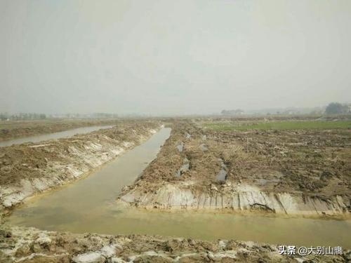 如何将农村池塘的水净化成生活用水?