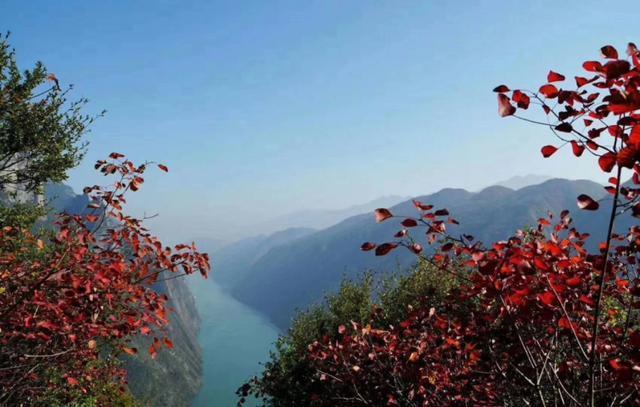 巫山看红叶最好的季节是什么呢?住宿哪里最合
