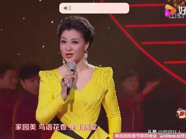 在当代中国,有博士学位的歌唱家有哪些?(图3)