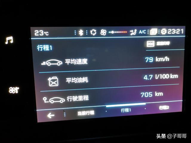 如果神龙汽车有限公司的名称改为:东风标致雪铁龙汽车有限公司,会怎么样?