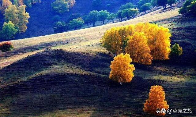 从河北出发,想去大草原看看,去哪个草原好?