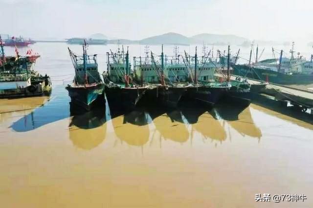 镇江网站建设远航网络,思创信息科技