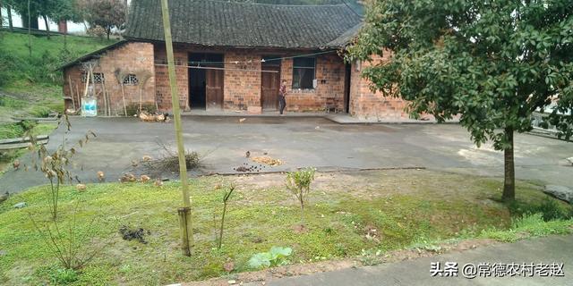 农村院子水泥地面翻新 农村老家的院子,不经常居住,用水泥硬化好,还是保留泥地好?
