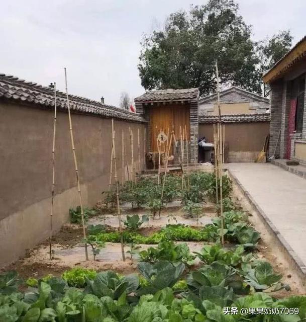 农村小院铺砖永久还是打水泥永久、农村院子全部用水泥或石板铺好还是留点种菜的地方好?