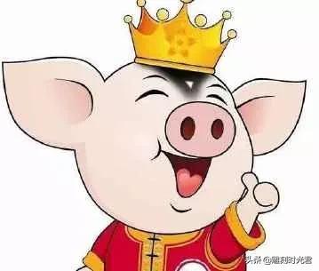 属猪人的性格特点是什么?