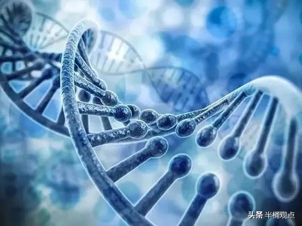 人火化后基因去了哪里?
