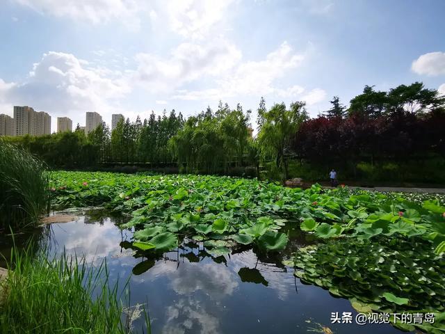 青岛景点,如果你到了青岛,你最想到哪个景点? 第26张