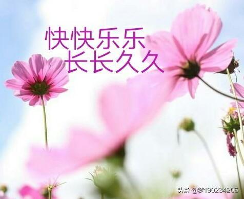 杨丞琳女朋友送什么礼物,杨丞琳的恋爱史,你知道多少?