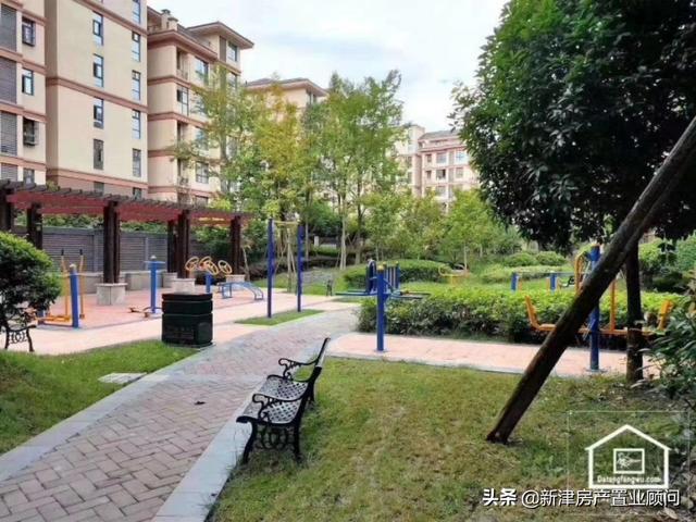 合肥新站寿春中学和三十八中北校区哪个学校好?