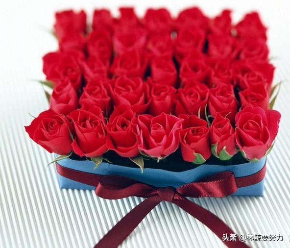 今日送给女朋友实用礼物有哪些,女友生日送什么礼物最好?