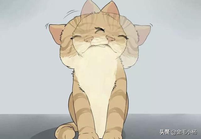 猫咪吃零食的时候为啥会变成飞机耳?