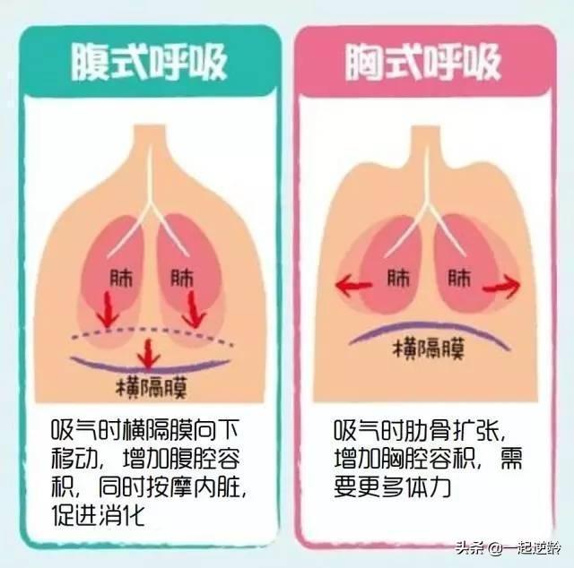 腹式呼吸对身体有害吗、怎么练就「腹式呼吸」?它对身体有哪些好处?插图1