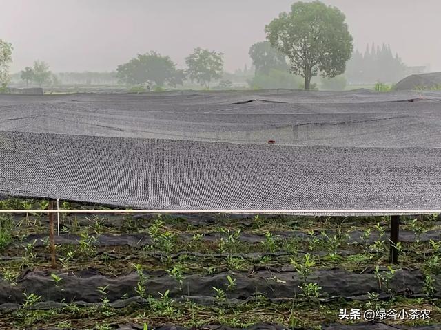 40米拦坝建造图 长约40米,高约20米左右的拦坝怎样建?