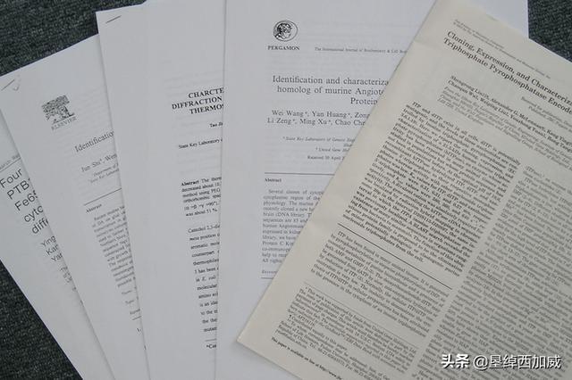 毕业论文写作篇——哪些内容可以放入论文附录?