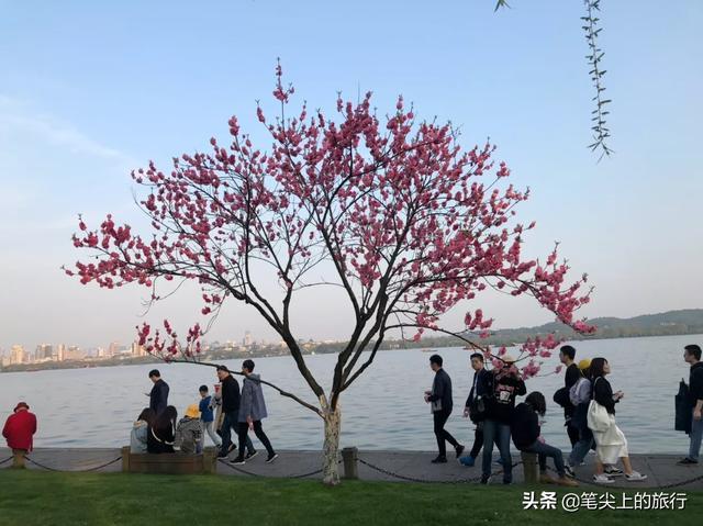 杭州有名的旅游景点大全?插图6