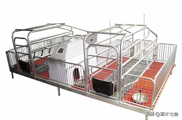 养鸡场一般需要哪些养鸡电子设备?散养鸡如何圈?(图3)