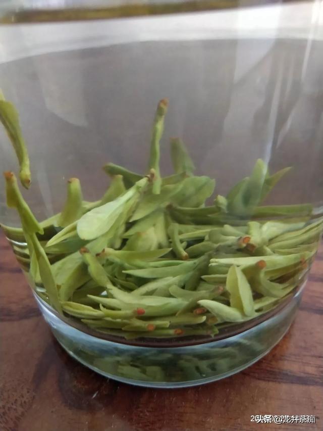 采茶机,采茶为什么要采一芽两叶?