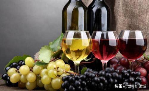 宁夏葡萄酒都有哪些著名的品牌呢?(图1)
