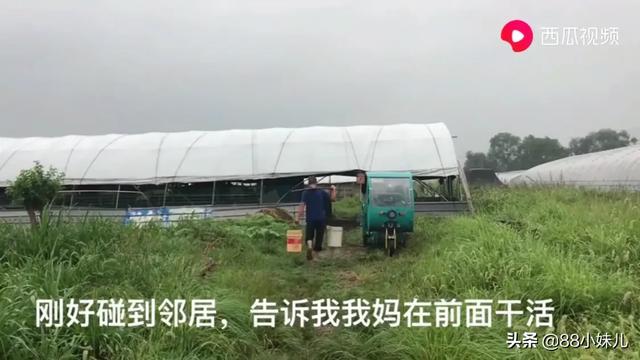 自己的养鸡能建养猪场吗?贫困地区对个人养猪场工业用地能转让吗?